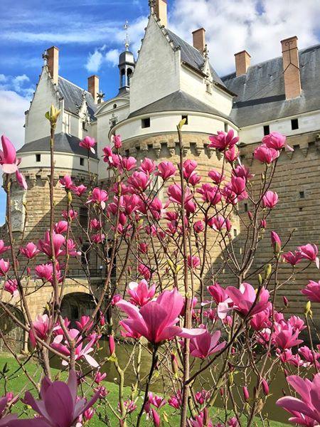 Toupie Shop au Chateau des Ducs Bretagne à Nantes