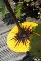 Soleil Grande Toupie en Bois Artisanal Déco Jeux Toupie à Main Cadeau Original Toupie Shop Magasin Jouet Spécialisé Toupies