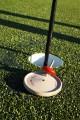 Toupie Golf Avec Plateau Jeux Bois Jouet Jura Jeu Adresse Cadeau Original Toupie Shop Magasin Jouets Toupies Fabriqué France