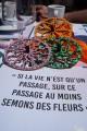 Roue Toupie en Bois Jeu Découpé au Laser Toupie Shop Magasin Jouets en Bois Pour Enfants Cadeau Original Citation Montaigne