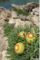 Renversante Jeux de Toupie en Bois Artisanal Jouet Magique Toupie Shop Magasin Jouets Noel Cadeau Original Enfant Adulte