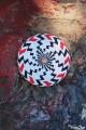 Jouet en Bois Toupie Scientifique Jeux Avec Effets Optiques Spirale Illusions Toupie Shop Magasin Jouets Acheter Cadeau Original