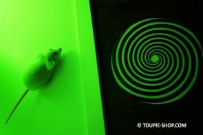 Hallucination Toupie Magique Jeux illusions Optiques Jouet Sciences Toupie Shop Magasin Jouets Toupies Cadeau Original