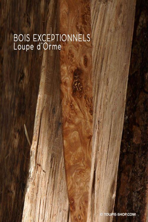 Rattleback Anagyre en Bois exceptionnels Toupie en Loupe Orme bois rare local Collection Toupie Shop Magasin Jouet Artisanal