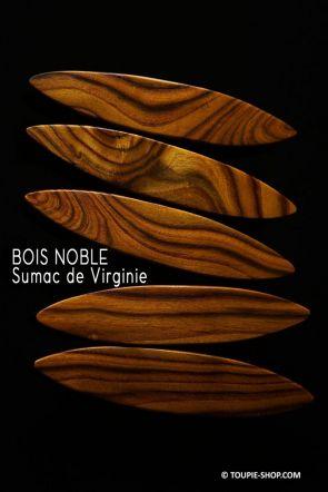 Rattleback Anagyre Toupie Bois Noble Local Sumac de Virginie Jeu Artisanal Scientifique Fabrique France Collection Toupie Shop