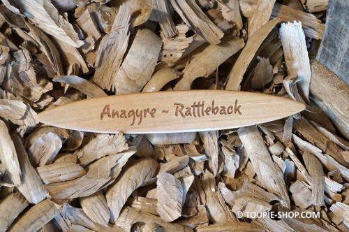 Anagyre Rattleback Toupie en Bois avec Citation Jeux Scientifique Cadeau qui a du Sens Toupie Shop Magasin Jouet Bois Nantes